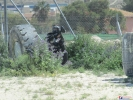 Paintball_alicante_campo_trafic_7
