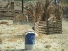 campo-el-fuerte-0006